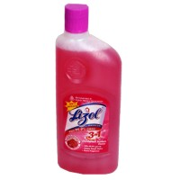 Lizol Disinfectant Floor Cleaner - Floral
